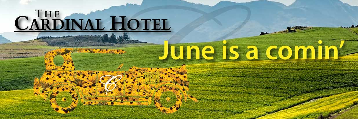 Canola fields with a vintage car covered with sunflowers and text: June is a comin'