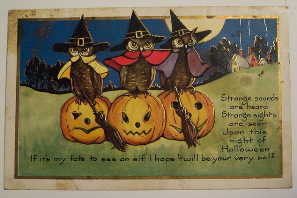 vintage postcard of three owls wearing witches hats sitting of jack-o-lanterns